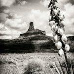 Canyonlands Photography Tours