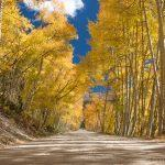 Fall and Autumn photography tours in Colorado