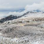 Photography tours and workshops - Guanella Pass