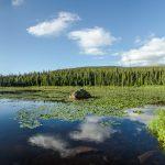 Photo tours for landscape