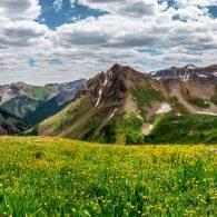 Landscape workshops in San Juan Mountains