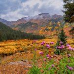 Photo Tours in the Rocky Mountains