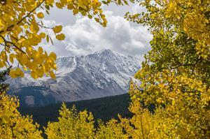 Photography composition Rule of foreground - mountain and leaves