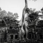 Photo Tours of ancient temples